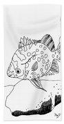 Fish And Rock Beach Towel