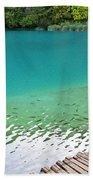 Fish Of Kaluderovac Lake Beach Towel