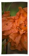 Flame Azalea Beach Towel