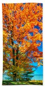 Flaming Maple - Paint Beach Towel
