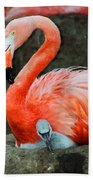 Flamingo And Baby Beach Towel