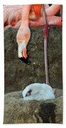 Flamingo And Chick Beach Sheet