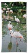 Flamingo Bath  Beach Towel