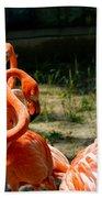 Flamingo Colony Beach Sheet