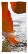 Flamingo Feeding Beach Towel