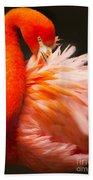 Flamingo Fluff Beach Towel