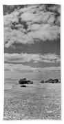 Flamingo Point Beach Towel