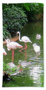 Flamingos 4 Beach Towel