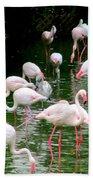 Flamingos 6 Beach Towel