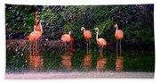 Flamingos II Beach Towel