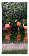 Flamingos II Beach Towel