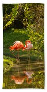 Flamingos Wading Beach Towel
