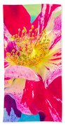 Fleurie Peppermint Rose High Key Beach Towel