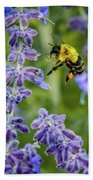 Flight Of The Bumble Bee Beach Towel