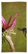 Flight Of The Mason Bee Beach Towel