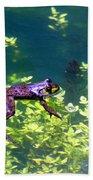 Floating Frog Beach Towel