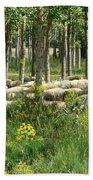 Flock Of Sheep Beach Sheet