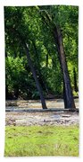 Flood Plain Beach Towel