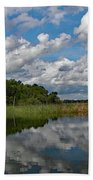 Flooded Low Country Rice Field Beach Towel
