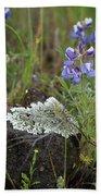 Flora On The Plateau Beach Towel