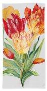 Floral Botanicals-jp3789 Beach Towel