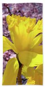 Floral Fine Art Daffodils Art Prints Spring Flowers Sunlit Baslee Troutman Beach Towel