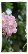 Floral Garden Pink Rhododendron Flowers Baslee Troutman Beach Towel