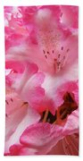 Floral Rhodies Flowers Pink White Art Baslee Troutman Beach Towel