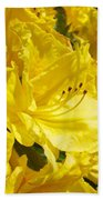 Floral Rhododendrons Garden Art Print Yellow Rhodies Baslee Troutman Beach Towel