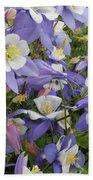 Floral3 Beach Sheet