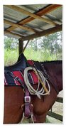 Florida Cracker Horse Beach Towel