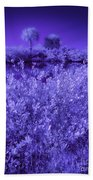 Florida Lagoon In Ir Beach Towel