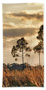 Florida Pine Landscape By H H Photography Of Florida Beach Towel