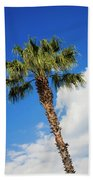 Florida State Tree Beach Towel