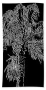 Florida Thatch Palm In Black And White Beach Towel