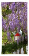 Flower - Wisteria - A House Of My Own Beach Towel by Mike Savad