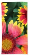 Flower Burst Beach Towel