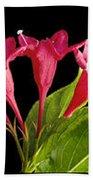 Flower Composite Trio Horizontal Beach Towel