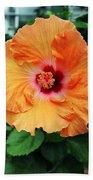 Flower Explosion2 Beach Towel