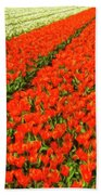 Flower Farm 2 Beach Towel