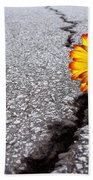 Flower In Asphalt Beach Towel by Carlos Caetano
