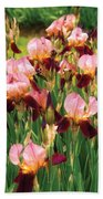 Flower - Iris - Gy Morrison Beach Towel