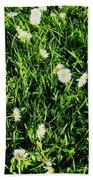 Flower Kissed Fields Beach Towel
