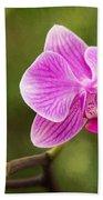 Flower - Pink Orchids Beach Towel