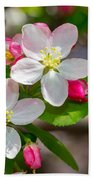 Flowering Cherry Tree Blossoms Beach Towel