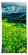 Flowering Colorado Mountain Meadow Beach Towel