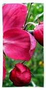 Flowering Crab Apple Beach Towel