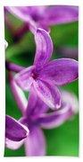 Flowering Lilac Beach Towel