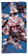 Flowering Of The Plum Tree 5 Beach Sheet