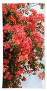 Flowering Tree Beach Towel